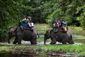 Elephant safari riders Chitwan National Park