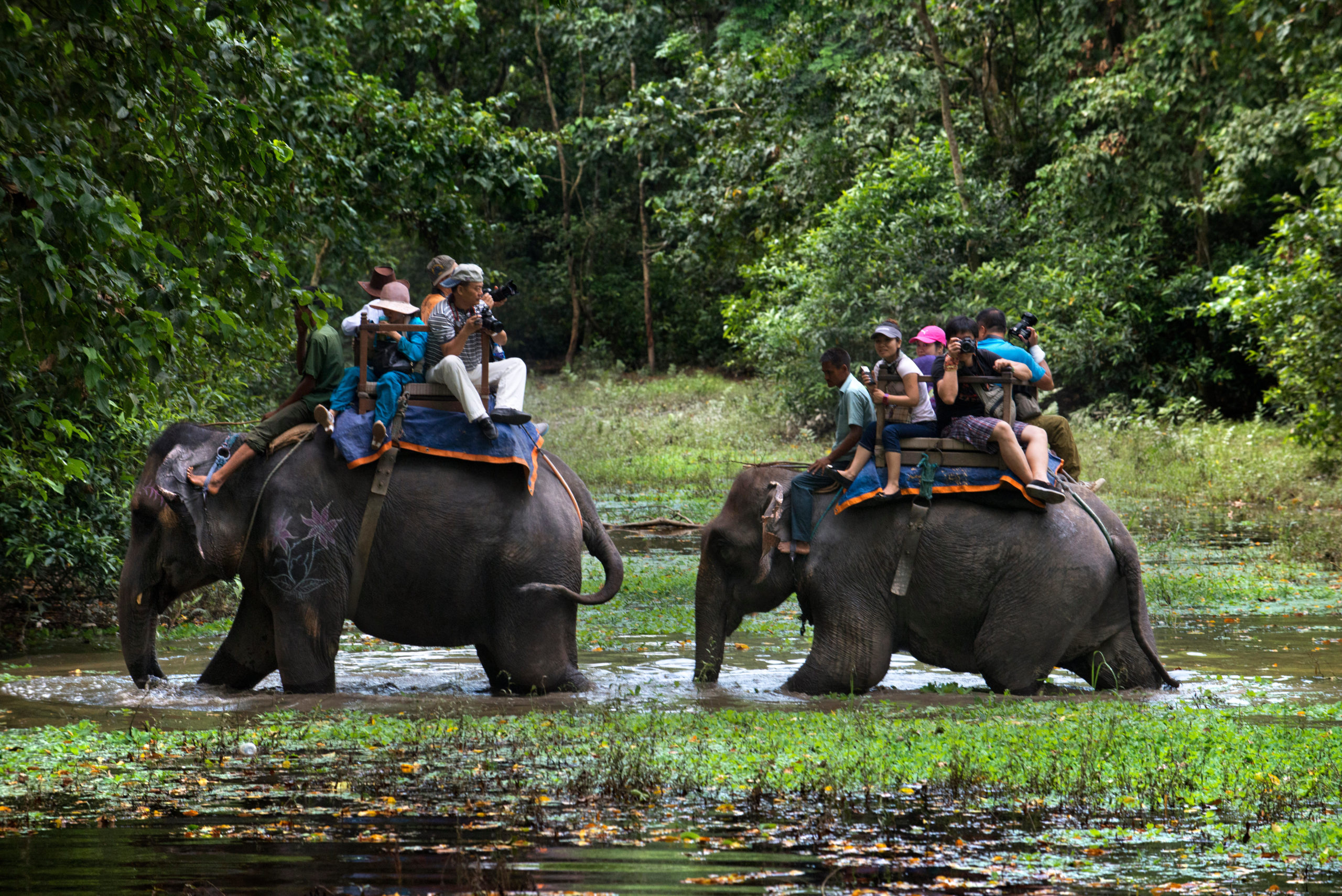 Elephant safari riders Chitwan National Park
