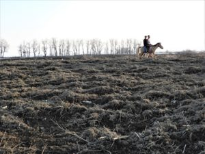 Two boys on horseback deep inside the Hokersar wetland, where excavated material has been dumped [Athar Parvaiz/The Third Pole]