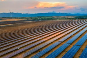A solar farm in Ninh Thuan, Vietnam, photographed in January 2020 (Image: Alamy)