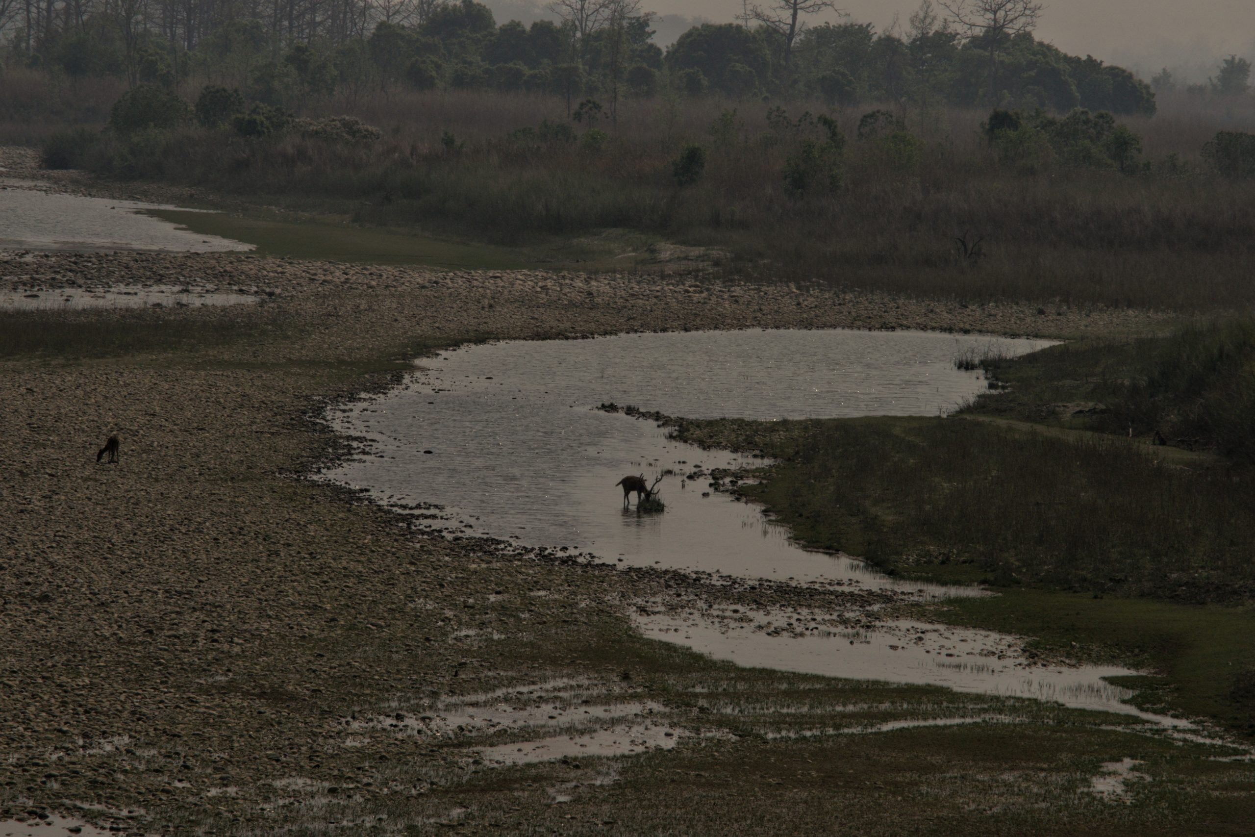 Low water levels in the Geruwa river in Bardia National Park, Nepal