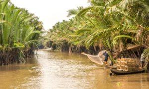 Fishing in the Mekong delta, Vietnam