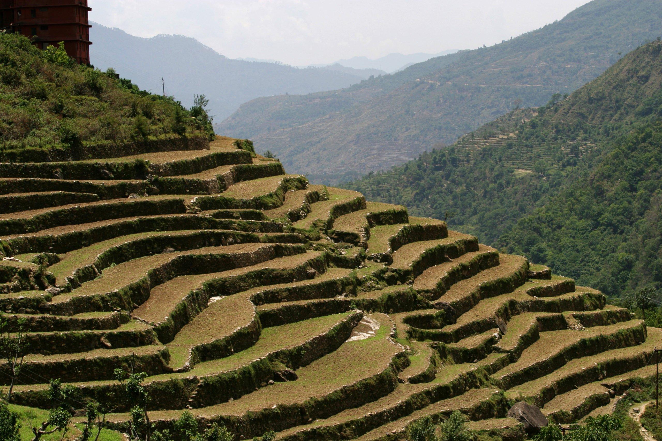 Terrace farming in Uttarakhand, Aroon Thaewchatturat