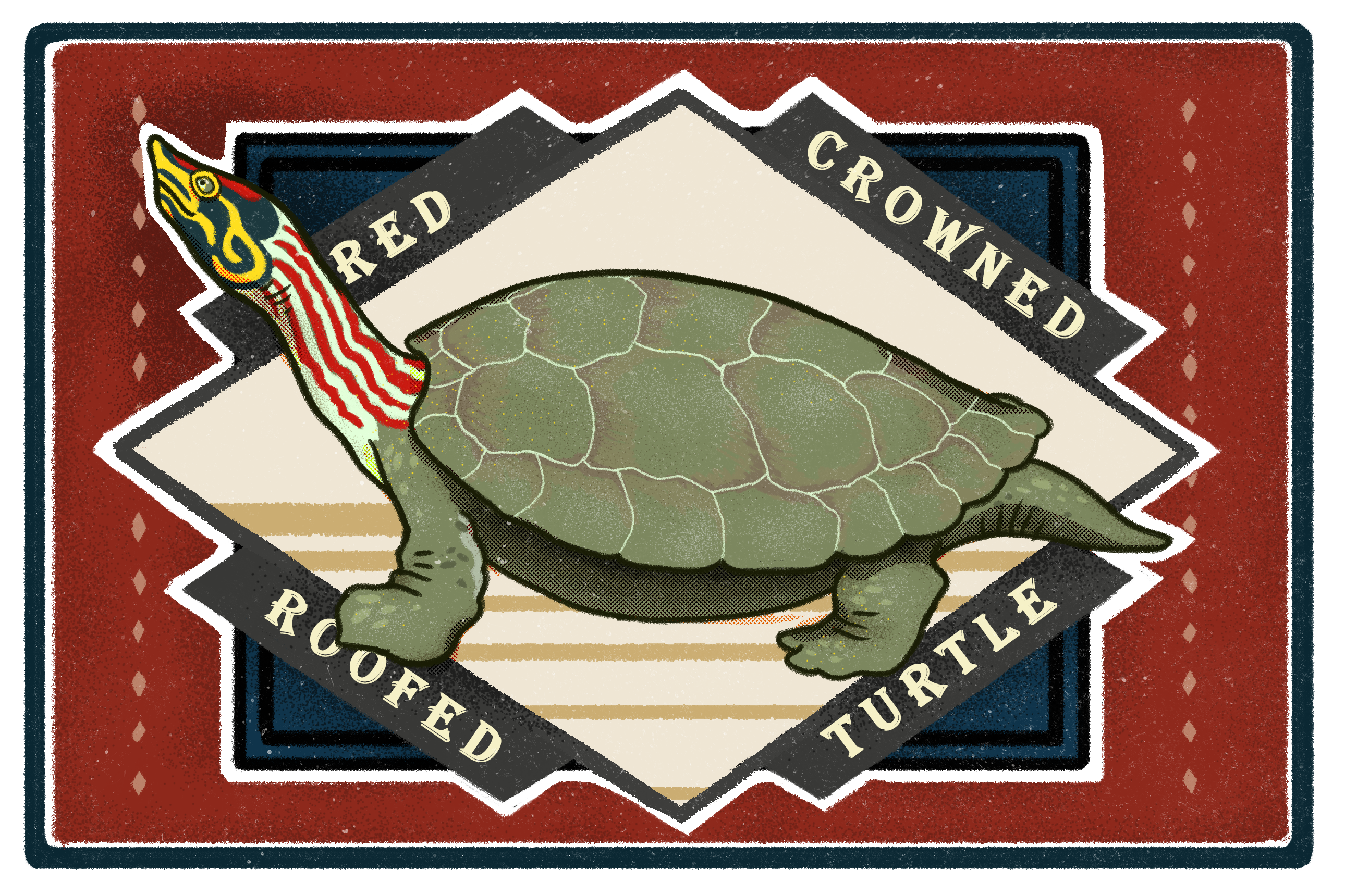 Illustration of a red-crowned roofed turtle by Kabini Amin