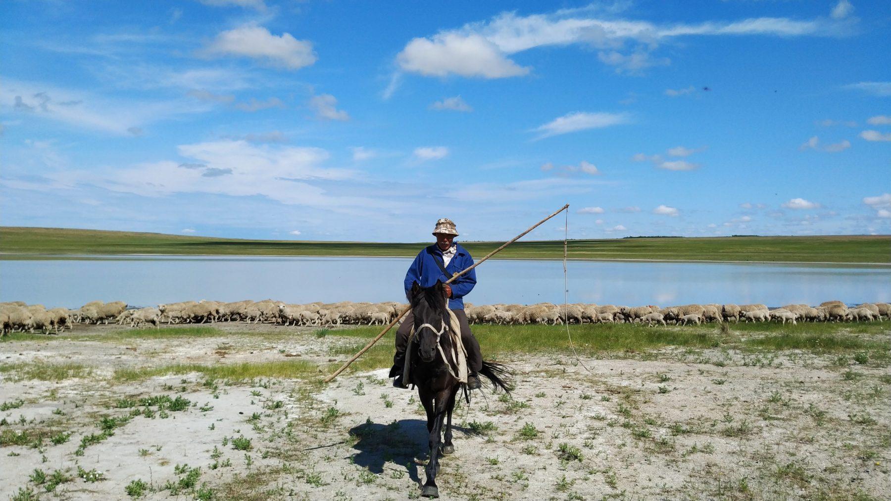 https://www.thethirdpole.net/content/uploads/2021/06/Landscapes-of-Dauria-Blue-Horse-12-scaled.jpg