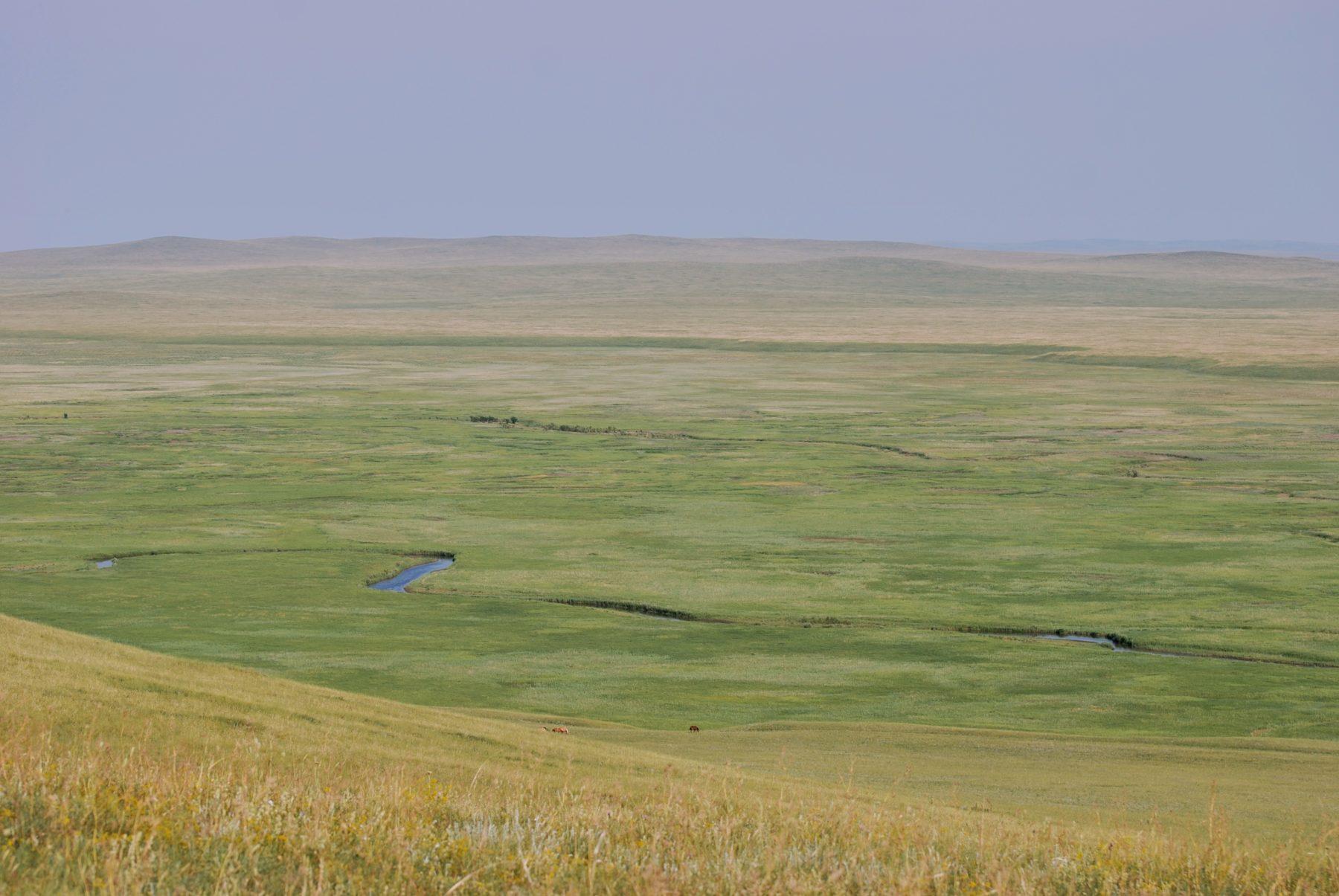 https://www.thethirdpole.net/content/uploads/2021/06/Landscapes-of-Dauria-Blue-Horse-5-scaled.jpg