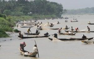Fishers collecting fish eggs on the Halda river, Bangladesh