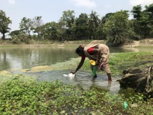 Shefali Biswas is collecting water from a pond