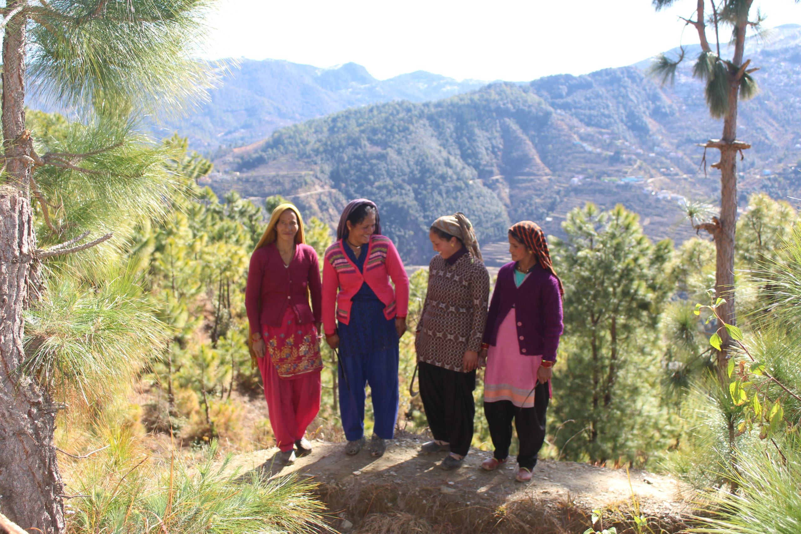 Women in Nathuakhan village, Nainital, Uttarakhand, who have just pruned trees in a water-recharge zone, Manya Singh