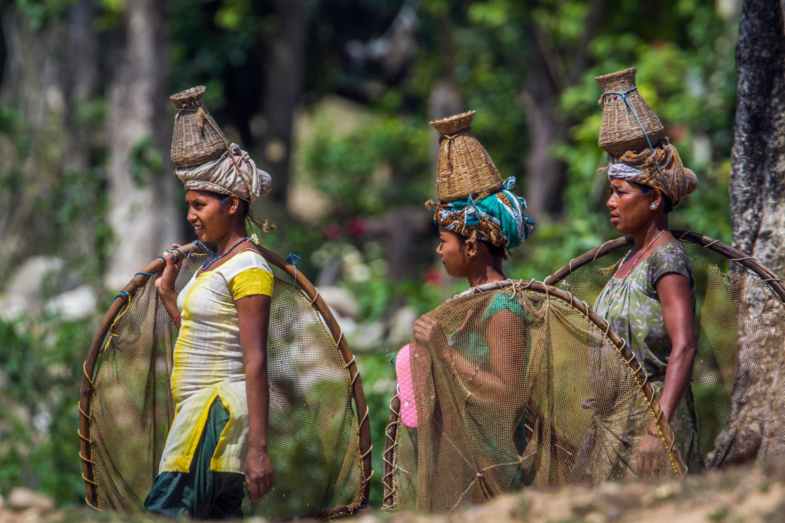 Tharu women fishing in Bardia National Park, Nepal. Conservation success in Nepal has often come at the expense of indigenous rights, a report by Amnesty International and the Community Self Reliance Centre argues. (Image: Patrice Correia / Alamy)