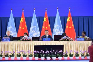 Closing plenary of COP15 on 14 October, 2021, in Kunming, China, Li Xin