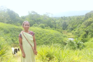 Thrias Makroh cultivates pineapples at her land on the slope of a hill. (Image: Varsha Torgalkar)